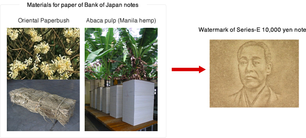 Materials for paper of Bank of Japan notes, Watermark of Series-E 10,000 yen note